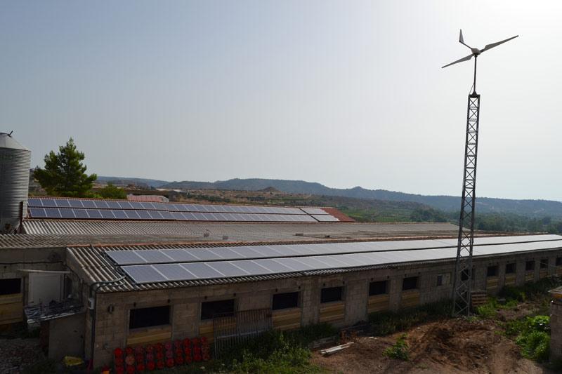 Instalación de renovables en una granja porcina de reproductoras en Fabara