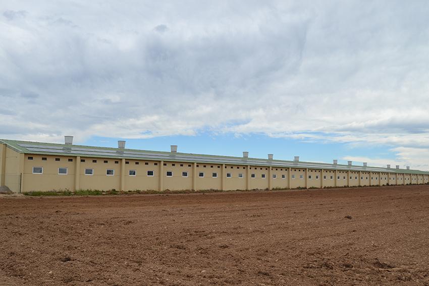 Fotovoltaica aislada en granja porcina de engorde en Almacellas (LLeida)
