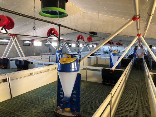 Instalación fotovoltaica en granja porcina Huesca