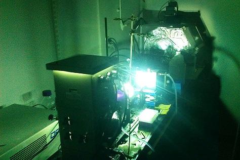 MIT thermal