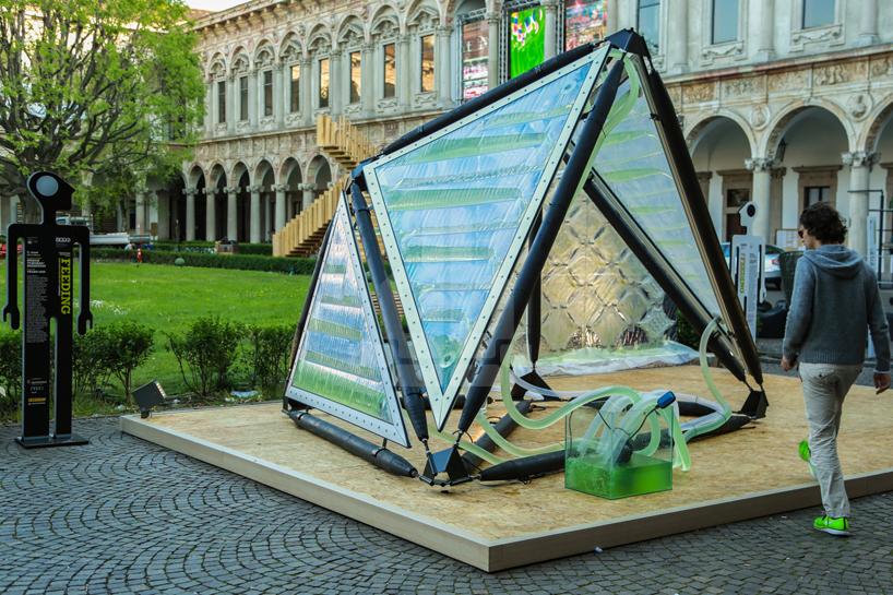 Urban Algae Canopy, estructura de algas produce oxígeno como cuatro hectáreas de bosque al día